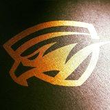 Black Falcon - logo