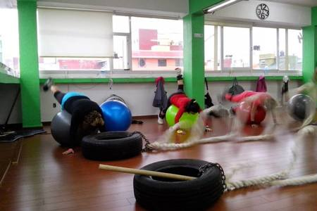 Master Fit and Dance -