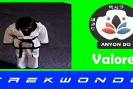 Anyondo Taekwondo