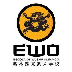 ESCOLA DE WUSHU KUNG FU -