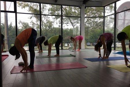 The Yoga Lab -