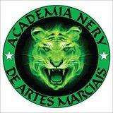 Academia Nery de Artes Marciais - logo