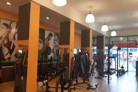 Zeus Gym -