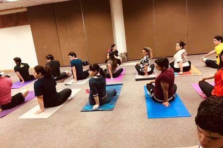 Yoga en Sintesis Mexicali