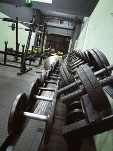 Work Out Academia -