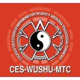 Colegio De Wushu Y Medicina Tradicional China Ces Wushu. - logo