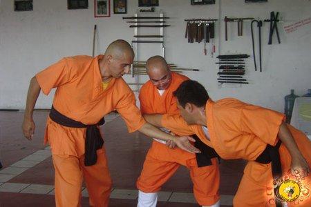 Kung Fu Shao Lin Queretaro