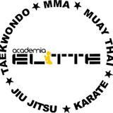 Academia Elitte - logo