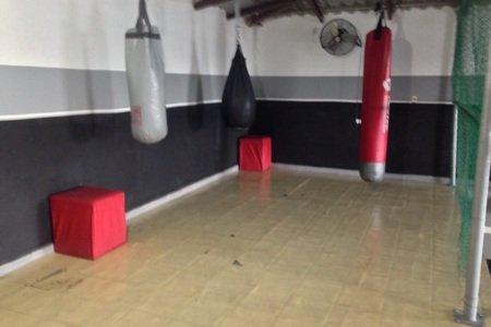 Body Training Gym