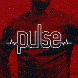 Pulse Academia - logo