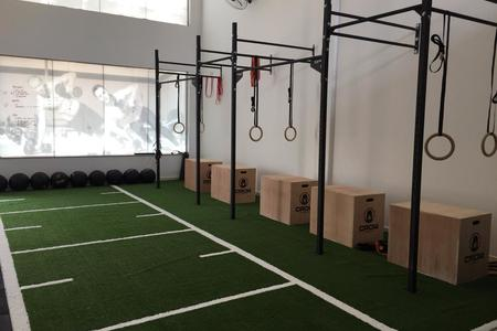 Box Training -