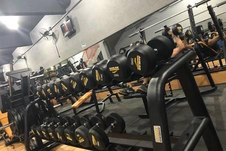 Brothers Gym academia -