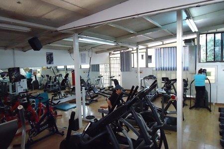 Delfines Gym