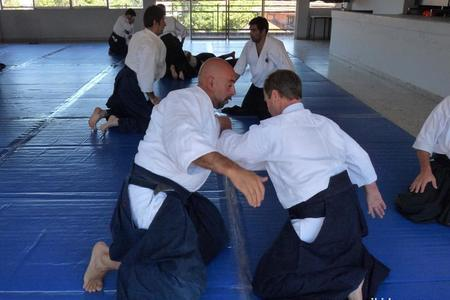 Asociación Sudemaricana de Aikido