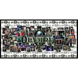 Academia Olympia - logo