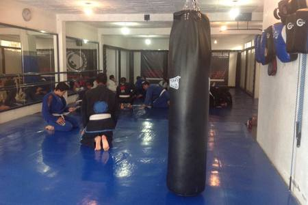 Steel Core Fight Center (Renzo Gracie Toluca)