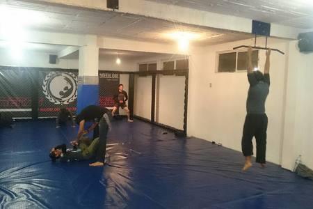 Libre Fighting System Toluca