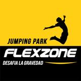 Flexzone Jumping Park Isla Angelópolis - logo