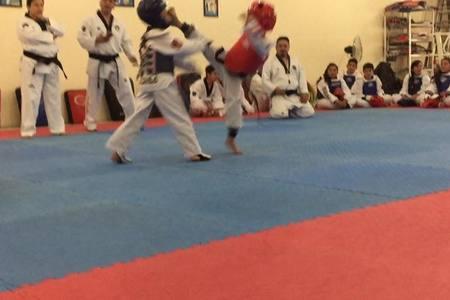 Centro Profesional de Taekwondo Balbuena -