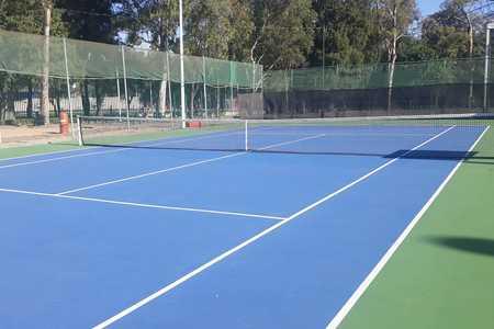 Academia de Tenis Plan Sexenal -