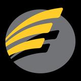 Academia Estação Fitness - logo