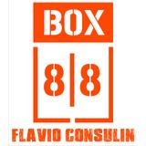 Box 88 Flávio Consulin - logo