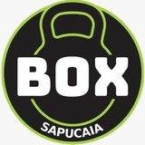 Box Sapucaia - logo