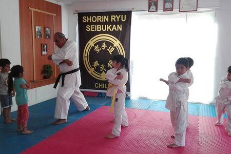 Karate Seibukan José Luis Galarce