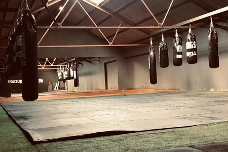 VIKINGS GYM & BOX sede Vicente lopez