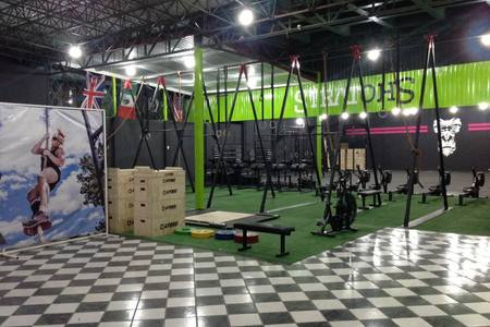 MxFit Training & Nutrition