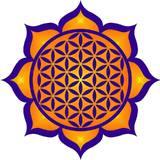 Yoga Flor Da Vida - logo