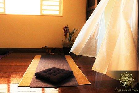 Yoga Flor da Vida -