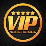 Vip Fitness E Wellness - logo