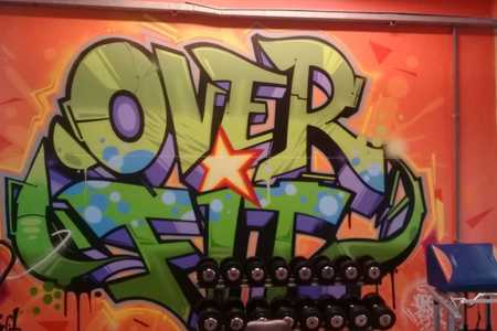 OVER FIT ACADEMIA -