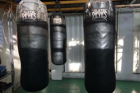 Canguros Boxing -