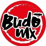 Budo Mx Artes Marciales - logo