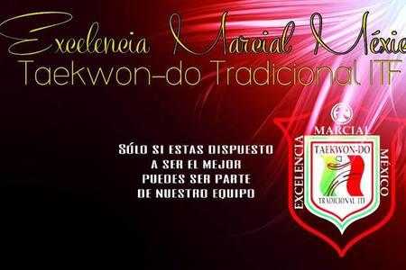 Excelencia Marcial Mexico Taekwon-do Tradicional ITF