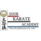 Sour Karate Academy - logo