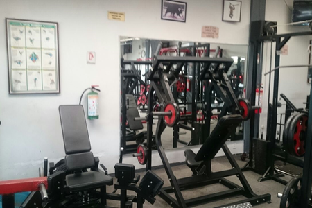 Bull's Gym -