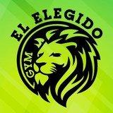 El Elegido Solanet - logo