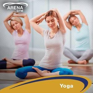 Arena Gym -