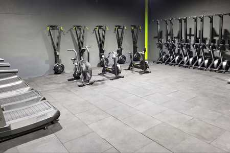 Barbulls strength and conditioning -