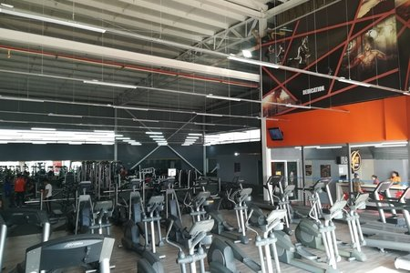 Gym FlashFit