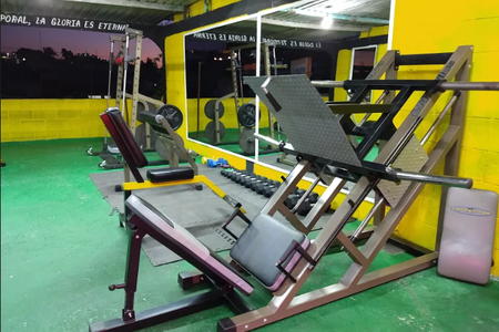 Vivis Gym