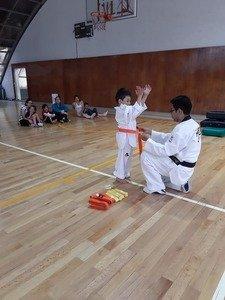 Escuela Taekwondo Kyeongju Onofre Deportivo Antonio Caso BB -