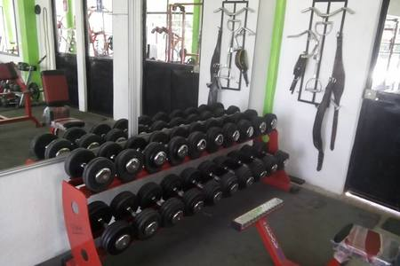 Gto Gym
