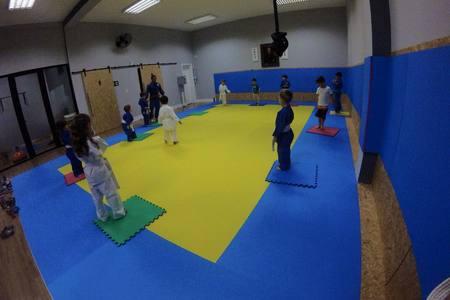 Tatame Go Judo