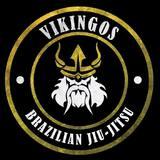Vikingos Team Bjj - logo