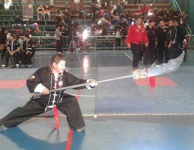 Shaolin Fut Tao Quilicura