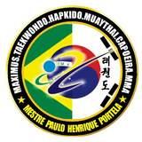 Academia Maximus - logo